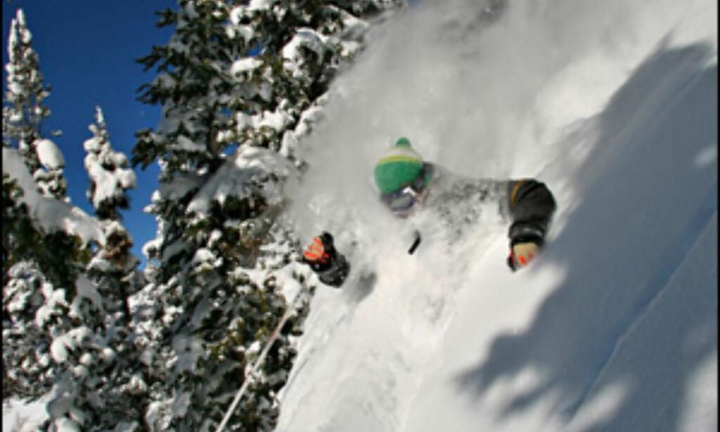Noen trenger skibrillene mer enn andre...<i>Foto: Aspen/Snowmass.com</i>