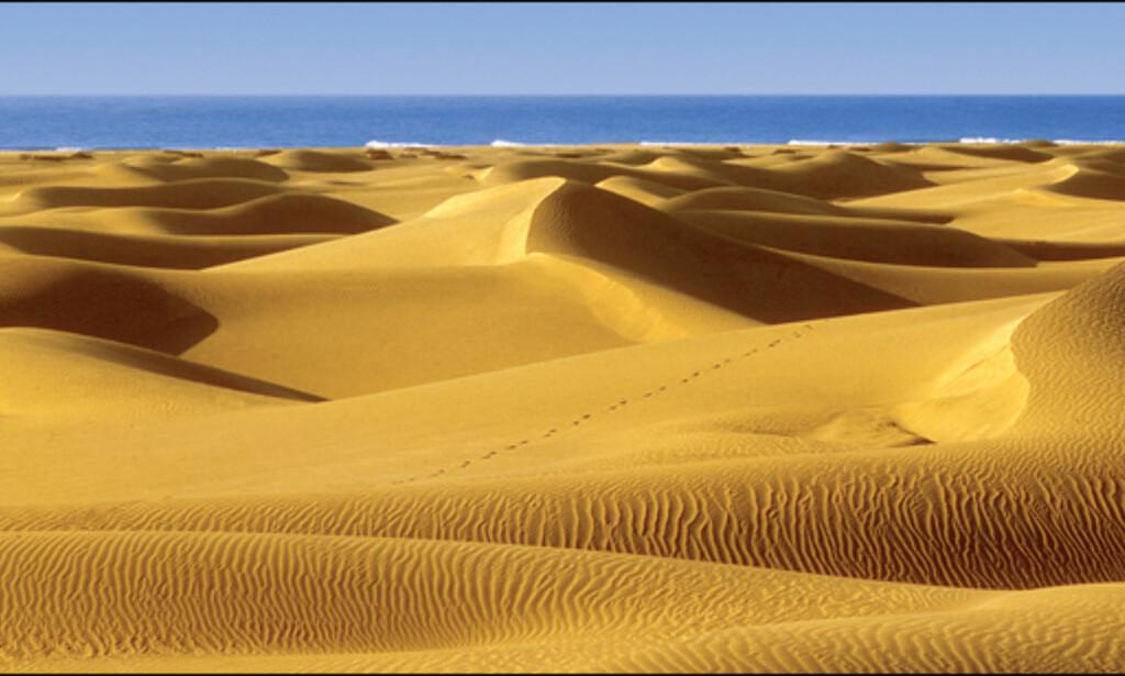 Sanddynene i Maspalomas er en av øygruppens store høydepunkter, med eller uten klær.