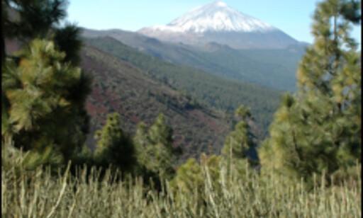 Teide er Spanias høyeste fjell.