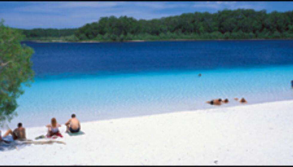 Australia og Frasier Island er som kjent et strandkontinent. Her fra Lake McKenzie.