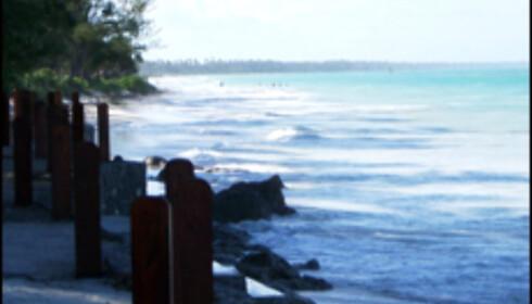 Zanzibar har vært i søkelyset for å ha kloakkproblemer, men vi opplevde strendene som fantastiske.
