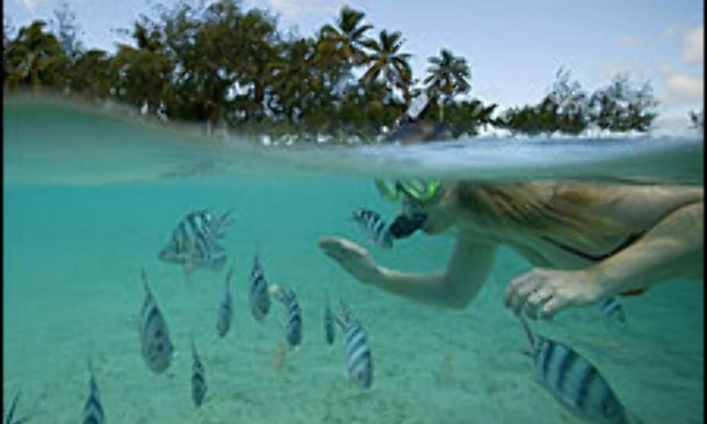 Fiji er ett av stoppestedene for Vings jorda-rundt-fly. Foto: Rex Features/All over press