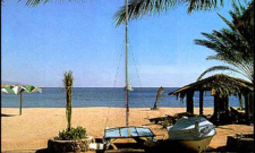 Foto:Egypt Tourism Foto: Egypt Tourism