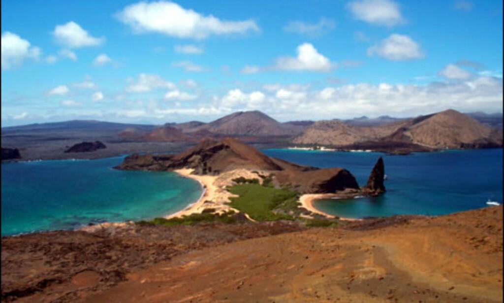 Galapagosøyene, en av de sju underverker?Foto: Agnes Gram Foto: Agnes Gram
