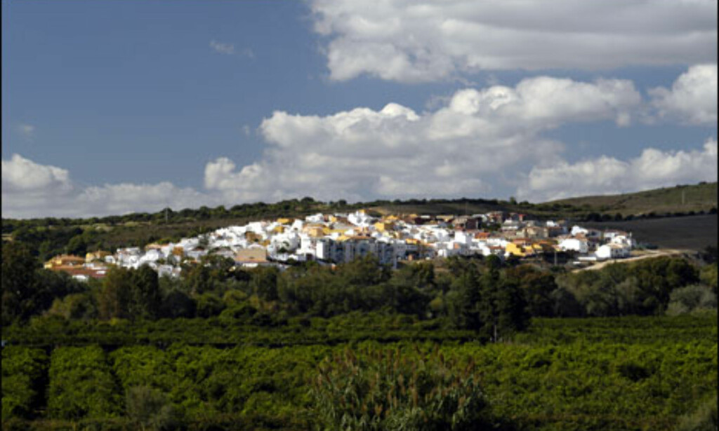 Som en hvit ås i landskapet ligger Guadiaro omkranset av appelsintrær. Foto: Vibeke Montero