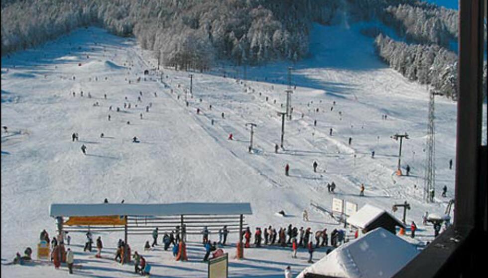 Kranjska Gora. Foto: Slovenia Tourism/D. Mladenovic Foto: Slovenia Tourism/D. Mladenovic