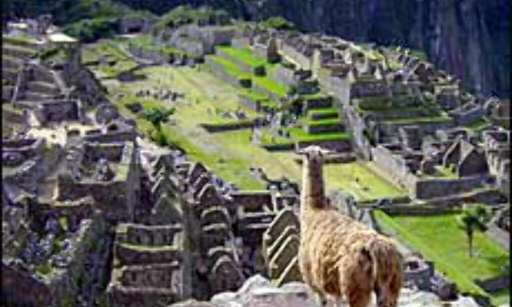 For å begrense skader og erosjon, stenger Peru inkaruten til Machu Picchu tre måneder i året. <i>Foto: Paul Jacob Hansen Foto: Paul Jacob Hansen