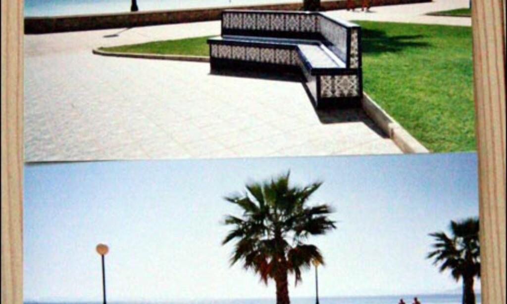 Beste & verste resultat av dette bildet, når vi holder undervannskameraene utenfor: Fujifilm (øverst) vs. Nice Color (nederst).