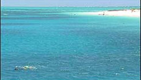 Idylliske sandøyer stikker opp fra revet, og innbyr til både bad og snorkling. Foto: Sindre Storvoll