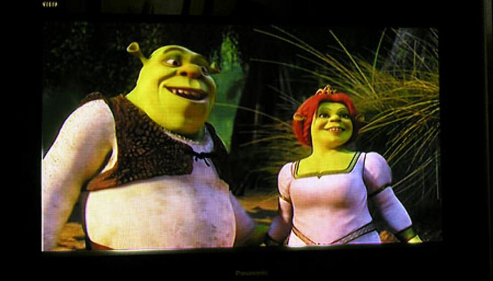 """DivX-formatet klarer seg faktisk bra på en 37"""" plasma, dersom bitraten er høy nok. Her spiller Packard Bell DVD-DVX350 Shrek II på vår plasma-TV fra Panasonic. I denne kvaliteten kan du få rundt fire totimers spillefilmer på én DVD-plate (4,35 GB)."""