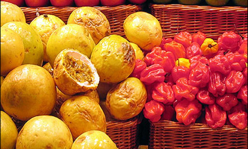 La Boquería fryder. Det store matmarkedet selger mat fra hele verden og alle immigranter i Barcelona finner mat fra sine hjemland på dette markedet.  Foto: Inga Holst Foto:  Inga Holst