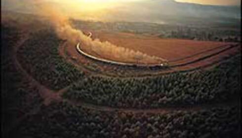 Rovos Rail er regnet som et av de mest luksuriøse togene i verden. Bilde gjengitt med tillatelse fra Safari Opplevelsesreiser Foto: Safari Opplevelsesreiser