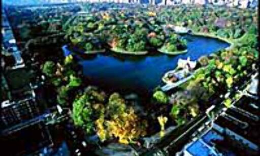 Central Park er gratis. Foto: (c)NYCVB Foto: (c)NYCVB