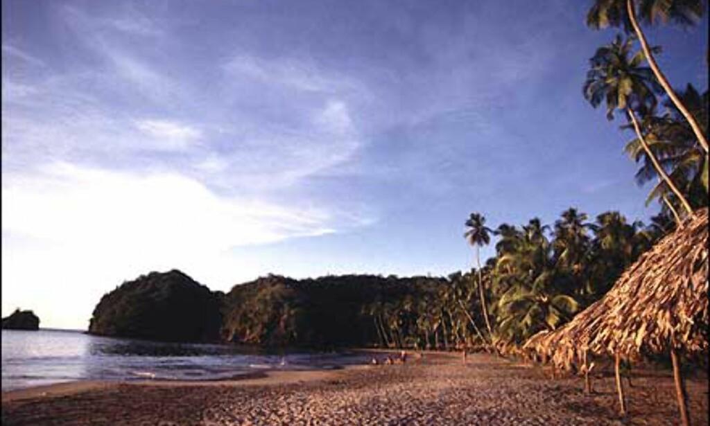 Playa Medina er en av mange vakre og romslige strender på Paria-halvøya.  Foto: Stian Mong