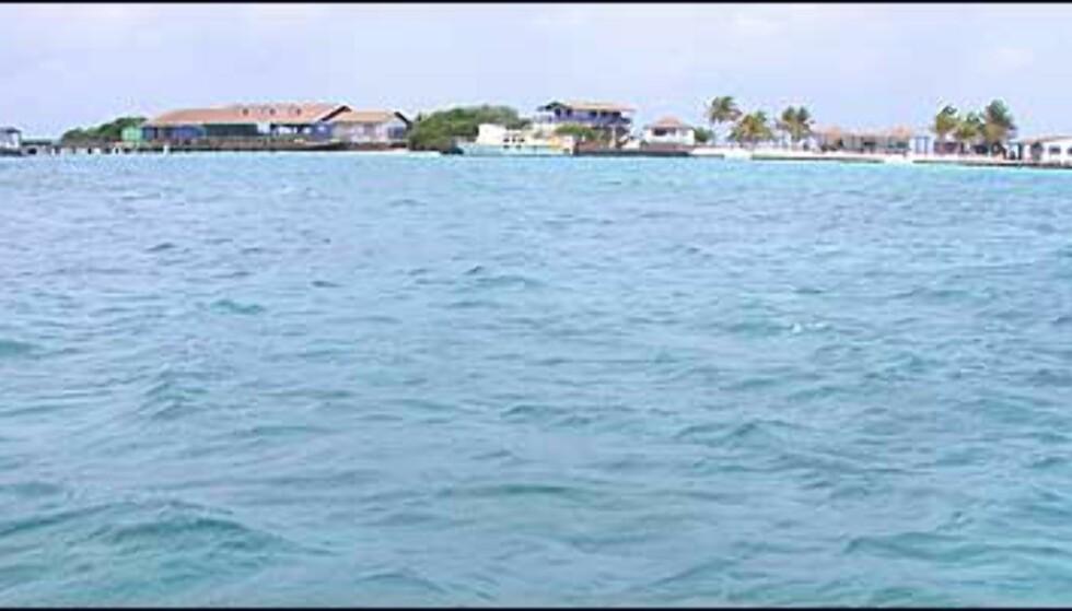 Private DePalm Island utenfor Aruba fungerer som dagresort for betalende gjester.
