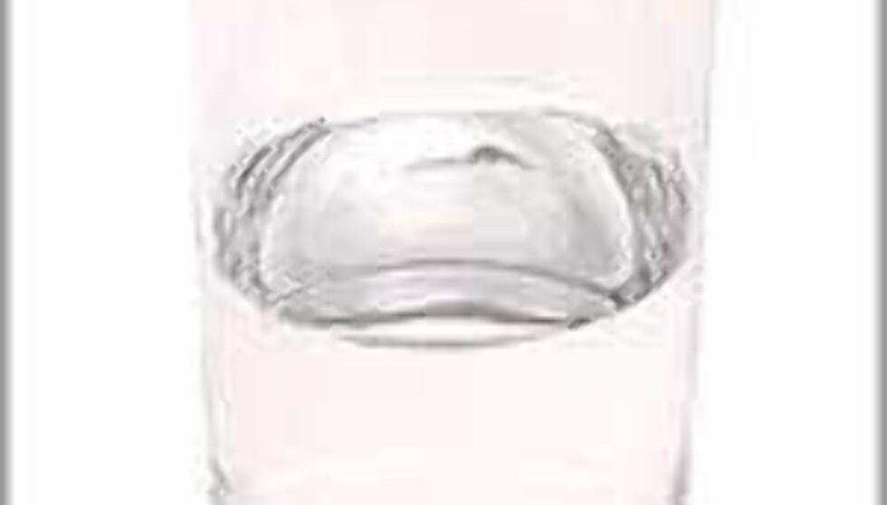 Det ser kanskje unnselig ut, vannglasset, men de klare dråpene er vitale for alle levende vesener.