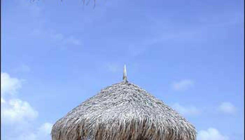 Karibisk drømmestrand på Aruba. Foto: Karoline Brubæk