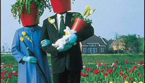 Mennesker med blomsterpotter til hode, skumle aliens og paparazzier som jakter på kjendiser bak hver busk. Natural Theatre kan du se på den blå steinen, til og med lørda 22. mai.  Bildet er gjengitt med tillattelse fra Festspillene i Bergen