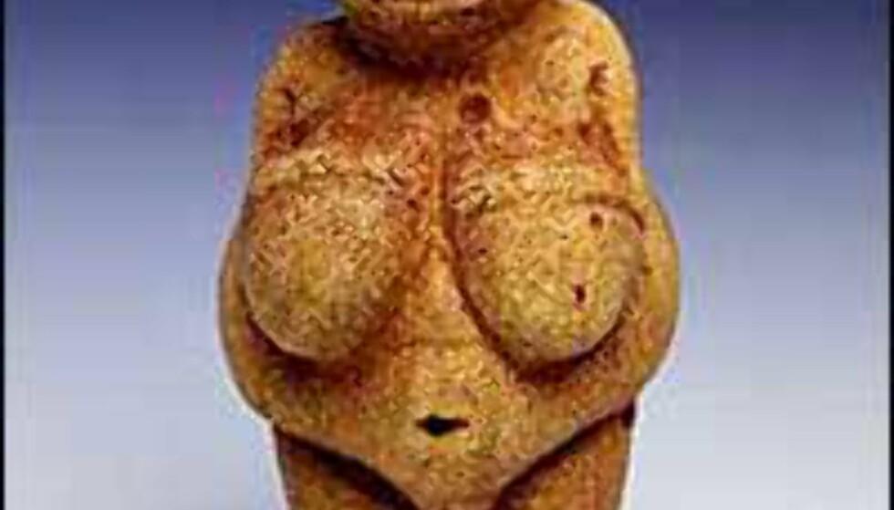 Venus fra Willendorf er velkjent, og du kan kjøpe kopier av denne ferme figuren til peishylla. Foto: Naturistorische Museum, Wien Foto: Naturhistorische Museum Wien