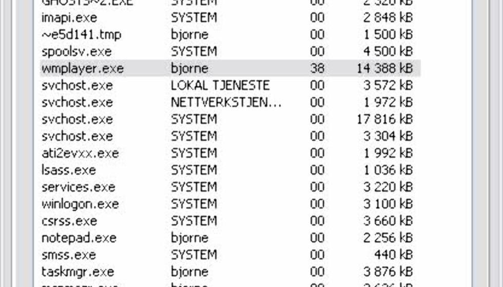 Under avspilling av DivX-klippet ble ca 40% av prosessorkraften beslaglagt (AMD Duron 1,6 GHz)