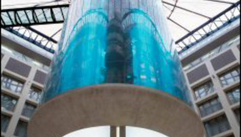 2.500 tropiske fisker kan boltre seg i en million liter saltvann i det 25-meter høye akvariet i hotellets lobby. Foto: Radisson SAS