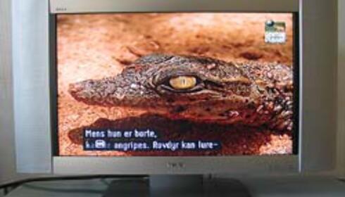 "TEST: Sony 26"" LCD"