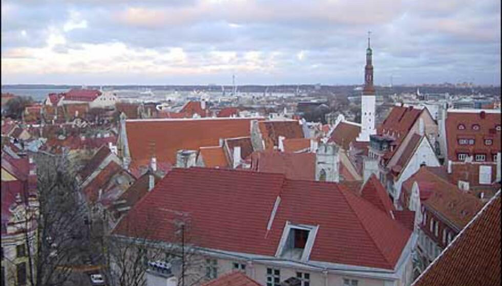 Utsikt fra byborgen i gamlebyen. I det fjerne ser du nyere bydeler, og til venstre Østersjøen og havneanlegget. Foto: Øyvind Blankvandsbråten