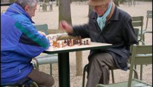 To eldre herrer  i dyp konsentrasjon over et slag sjakk i Jardin de Luxembourg. Det er mange som kommer hit for å spille, og har du lyst blir du invitert med. Vær forberedt på et forrykende tempo. Foto: Elisabeth Dalseg Foto: Elisabeth Dalseg