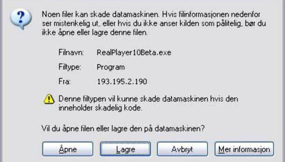 Lagre filen på harddisken, eller installer direkte. Lagrer du på harddisken, dobbelklikker du på filen fra Utforsker når den er ferdig nedlastet. Da installeres RealPlayer 10, og RealRhapsody følger med i denne pakka.