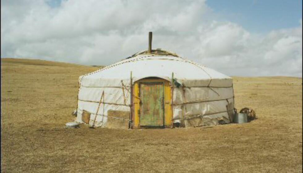 Mer fra Mongolia av Mette Tronvoll