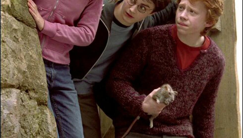 Hermine, Harry og Ron kommer stadig i trøbbel. Hva er det de speider etter her....?Bildet er gjengitt med tillatelse fra Warner Bros. og Sandrew Metronome Foto: Warner Bros. og Sandrew Metronome