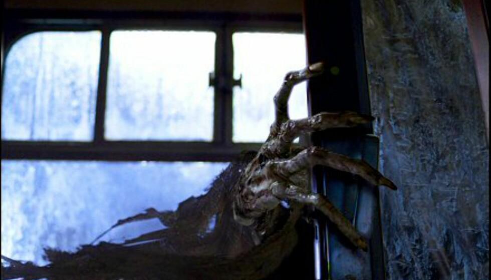 ... har det noe med eieren av denne hånden å gjøre, kanskje?? Harry Potter og fangen fra Azkaban har premiere 11. juni. Bildet er gjengitt med tillatelse fra Warner Bros. og Sandrew Metronome