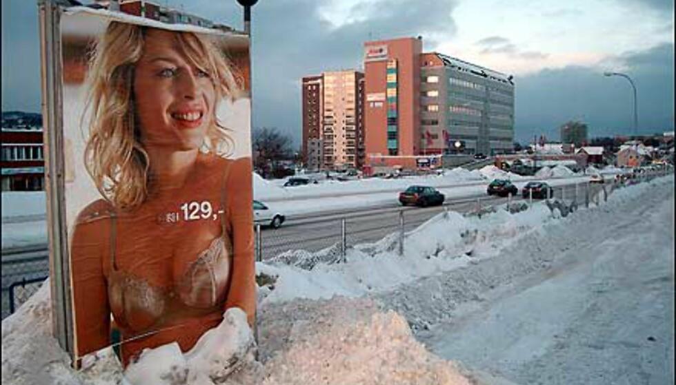 Brr! Det sier fotografen Lars Andreas Dybvik også, om dette bildet fra kalde Trondheim. Godt observert, sier juryen. Foto: Lars Andreas Dybvik