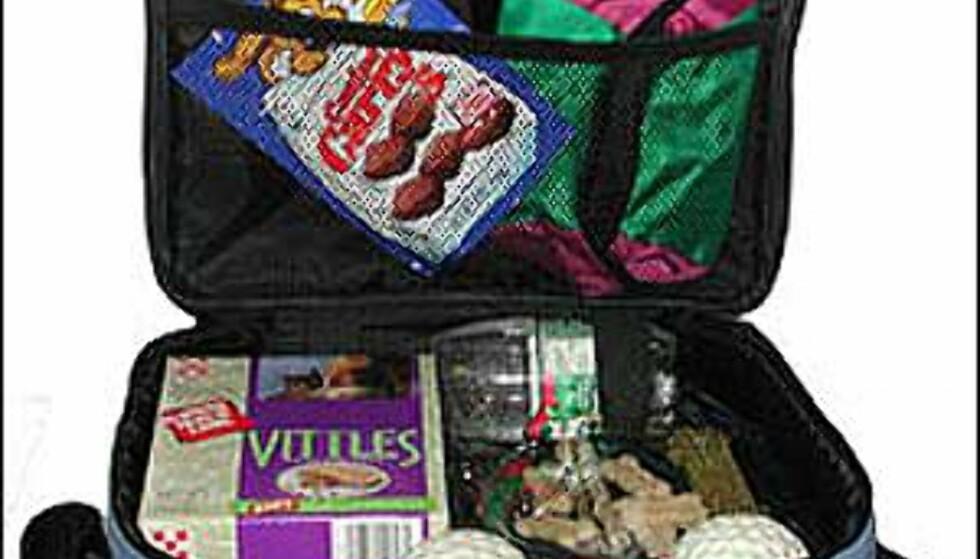 Bag med plass til alt firbente turister måtte trenge, som for eksempel sammenleggbare kopper for vann og mat. Foto: The Franzus Company Foto: The Franzus Company