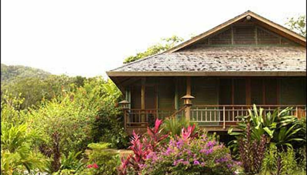 Tropisk og frodig på Roatan. Palmetto Bay Plantation Foto: Palmetto Bay Plantation