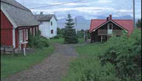 Grytøy Gjestestue ligger på Farmen-øya. Foto: Grytøy Gjestestue Foto: Grytøy Gjestestue