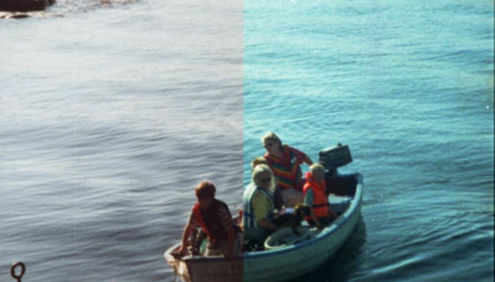 Skan av paiprkopi (venstre del) vs av negativ film (høyre del)