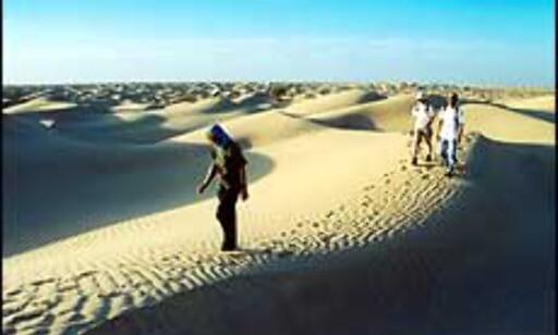 Ørkensafari i Tunisia er et mulig alternativ for reisekuppjegeren nå. Foto: Roberto Rollemberg Santana Foto: Roberto Rollemberg Santana