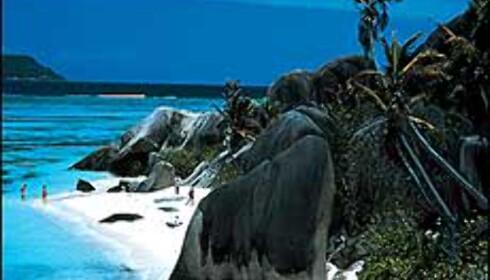 Seychellene er et aktuelt alternativ for giftelystne. Foto: Magellan Tours Foto: MAgellan Tours