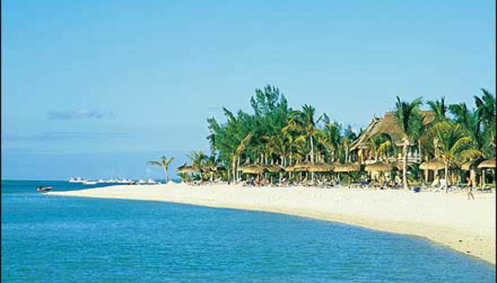Strand på Mauritius. Foto: Magellan Tours Foto: Magellan Tours