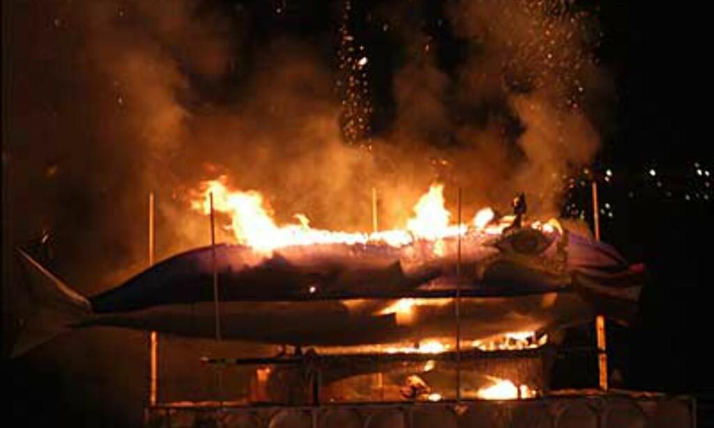 Sardinen brennes, og det er slutt på karnevalet for denne gang. Foto: www.laspalmascarnaval.com