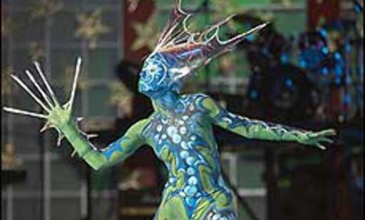 Malt kostyme fra en av konkurransene under karnevalet i Las Palmas i fjor.  Foto: www.laspalmascarnaval.com Foto: http://www.laspalmascarnaval.com/