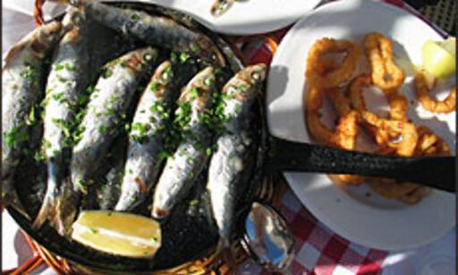 Sardiner, salat og olje. Og stek, mayones, sjokolade, kaker og vin.  Foto: Inga Holst  Foto: Inga Holst