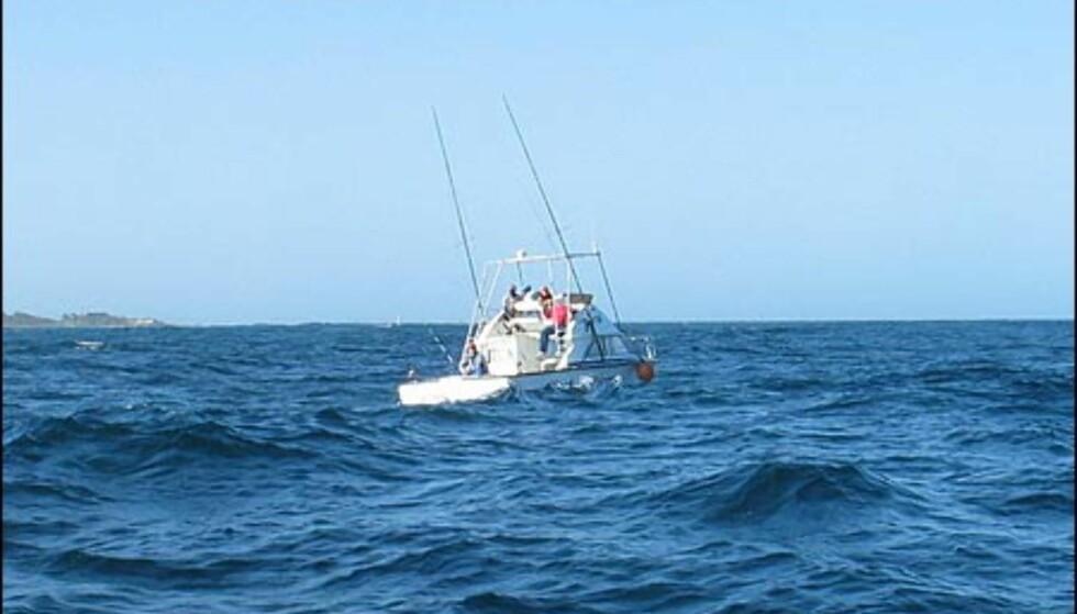 Har du råd, kan du fiske sverdfisk og tunfisk rett utenfor kysten.