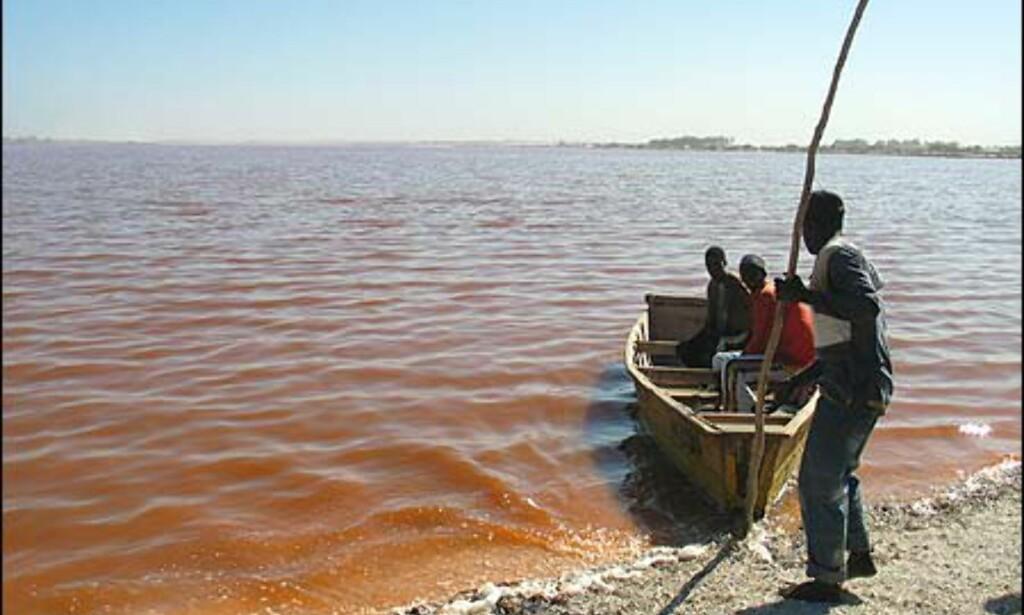 Den rosa sjøen, rett utenfor Dakar, har til uminnelige tider skjenket salt til befolkningen.