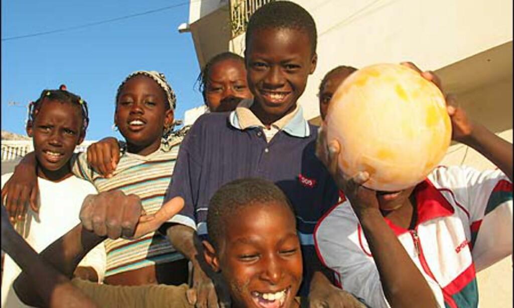 Fotball er stort i de fleste afrikanske land. Senegal deltok i VM i 2002 og har et av Afrikas beste landslag.