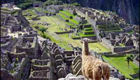 Machu Picchu - Inkaindianernes hovedsete. <i>Foto: Paul Jacob Hansen</i> Foto: Paul Jacob Hansen