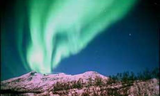 Aurora Borealis, nordlyset, har gitt navn til både festivaler og konferanser.                   Foto: Destinasjon Tromsø Foto: Destinasjon Tromsø