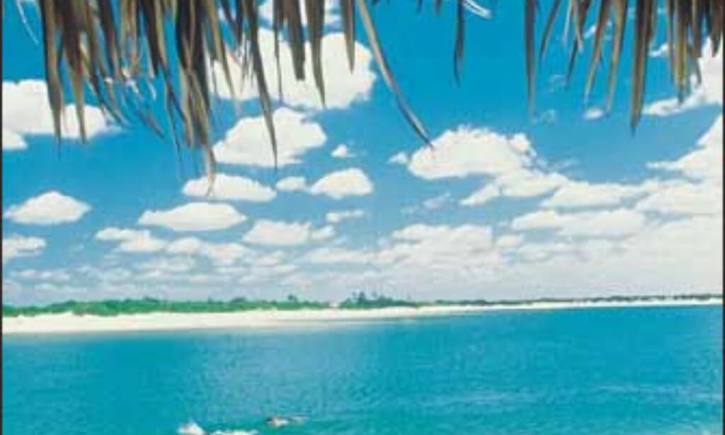 Ceará. Foto: www.brazil.org.uk
