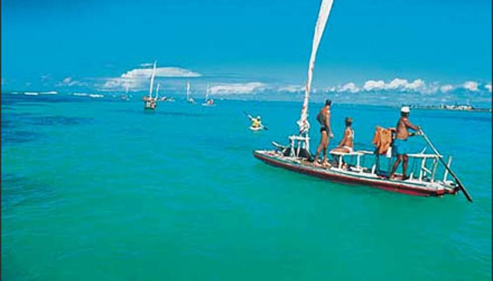 Ut i jungelen. Foto: www.brazil.org.uk